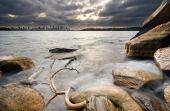 Rocks Near Shark Beach