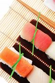Japanese Cuisine - Set of Tuna (maguro) Salmon (sake) and Eel (unagi) Nigiri Sushi  with Wasabi and