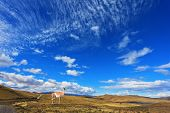 Dreamland Patagonia. Yellowed Plain National Park Torres del Paine in Chile. On the hill there is a lovely guanaco