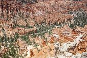 Panorama Of Bryce Canyon National Park.