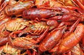 foto of craw  - closeup boiled craw fish for background uses - JPG