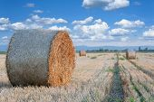 Straw Bale / Hey Stack On Golden Sunny Day With White Clouds In The Background