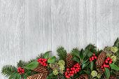 Traditional christmas and winter background border decoration of holly, ivy, fir leaf sprigs with pine cones.