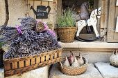 Lavender for sale in Provence, France.