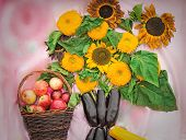 Basket With Apples And A Bouquet From Flowers Of A Sunflower And Vegetables.