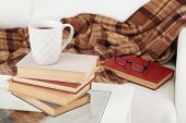Tabletop with pile of books, cup and glasses near the sofa with plaid