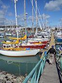 Nelson Boat Marina, New Zealand.