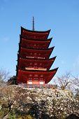 Miyajima Pagoda Located On The Red Hills Of The Island Of Miyajima.