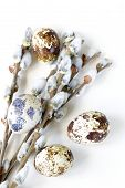 Easter composition of willow branches and eggs