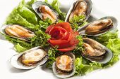 Mussels with fresh salad on white backgorund