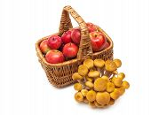 Red Apples In A Basket And Mushrooms Isolated On White Background