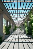 stock photo of pergola  - Pergola in the sun in Wroclaw Poland - JPG