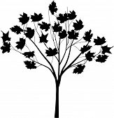 illustration with tree silhouette isolated on white background