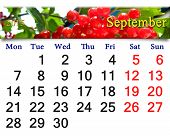 Calendar For September Of 2015 With Snowball Tree