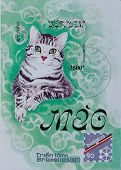 Stamp Shows Cat