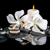 picture of reflection  - Beautiful spa still life of delicate white hibiscus zen stones with drops ice candles on reflection water closeup