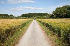 image of track field  - Germany North Rhine - JPG