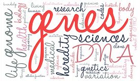 stock photo of genes  - Genes word cloud on a white background - JPG