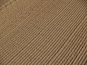 Raked Sand Background