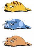 Verschlafene Katzen