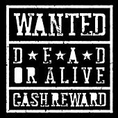 Wanted dead or alive vintage sign. Grunge styled stamp letters.  Raster template. Isolated on white poster