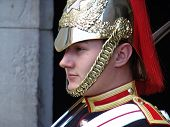 Horse guard on duty from Royal Horse Guards in London
