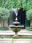 Water fountain in garden