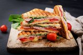 Club Sandwich Panini With Ham, Tomato, Cheese And Basil. poster