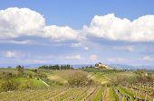 Paisaje de Tuscany