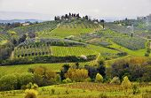 picture of farmworker  - Tuscany landscape - JPG