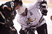PHOENIX, AZ - DECEMBER 18: Phoenix Roadrunners center Kimbi Daniels (#19) and Utah Grizzlies wing Ev