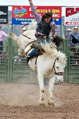 APACHE JUNCTION, AZ - FEBRUARY 26: A cowboy rides a bucking horse in the saddle bronc competition at