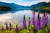 Beautiful Nature Norway natural landscape. poster