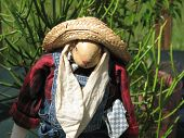 picture of polly  - Polly scarecrow on the front porch garden - JPG