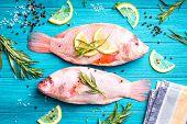 Raw Fresh Fish poster