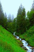 Cloudy Mountain Stream