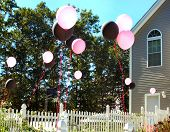 stock photo of birthday party  - birthday party decorations  - JPG