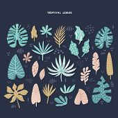 Exotic, Tropical Leaves Hand Drawn Flat Illustrations Set. Jungle, Rainforest Foliage Sketch Clipart poster