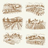 Vineyard Landscape. France Or Italy Vintage Village Wine Vineyards Vector Hand Drawn Illustrations.  poster