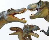 stock photo of foursome  - A Spinosaurus Tyrannosaurus Rex Velociraptor and Allosaurus in a Dinosaur Group - JPG