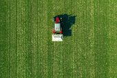 Agricultural Tractor Is Fertilizing Wheat Crop Field With Npk Fertilizers, Aerial View From Drone Po poster