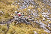 stock photo of workhorses  - Mule train carrying loads in high mountains of Cordillera Huayhuash Andes Peru South America - JPG