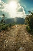 Dirt Road On Hilly Terrain In Sundown poster