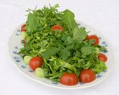 Spicy Salad With Tomatoes Lettuce Rocket And Cress poster