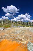 Grand Geyser Of Yellowstone