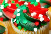 Red And Green Cupcake Closeup