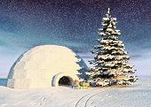 christmas igloo at the morning