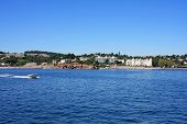 coast of Torbay