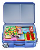 Full Holiday Vacation Suitcase