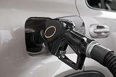 foto of high-octane  - A gasoline pump nozzle in the tank of an automobile - JPG